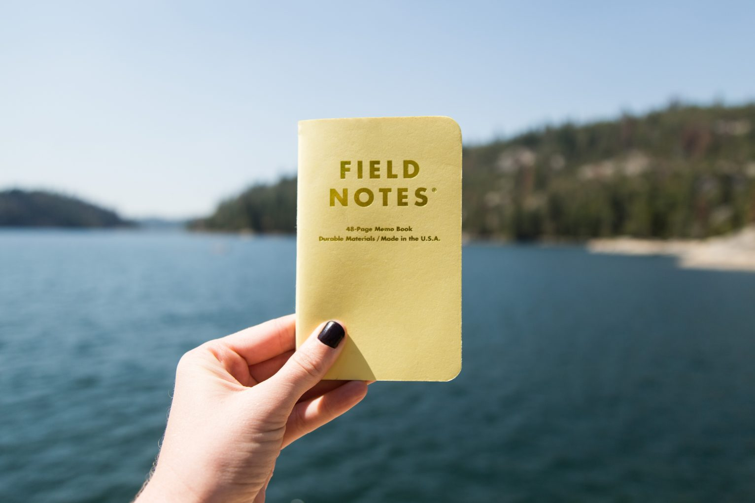 Field Notes at the shore
