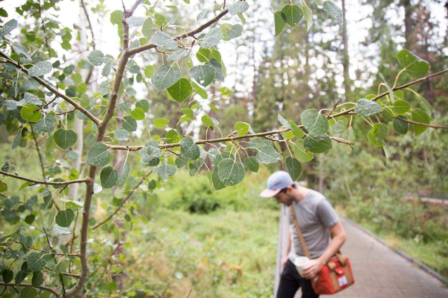 Josh Reeder-Esparza on the trail