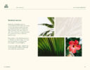 Lei Back Brand Guidelines showing how to incorporate botanical photography with the brand
